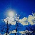 Sun Glow by Debra Lynch