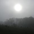 Sun In Fog Over Cemetery by Richard Singleton