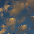 Sun Kissed Clouds by Alice Markham
