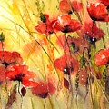 Sun Kissed Poppies by Suzann Sines