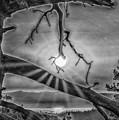 Sun Ornament - Black And White by Jonathan Hansen