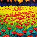 Sun Poppies by John  Nolan