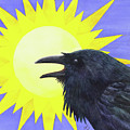 Sun Raven by Catherine G McElroy