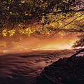 Sun Rays 1 by Adrian Malanca