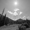 Sun Rays In Yellowstone Bw by Michael Ver Sprill