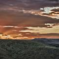 Sun Rays On Colorado Sage by Janice Pariza