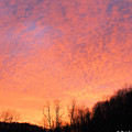 Sun Rise by Carolyn Postelwait