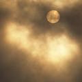 Sun Rising Through Fog by John Harmon