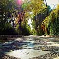 Sun Road by Yulia Solovyova