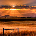 Sun Sets On Summer by Katie LaSalle-Lowery