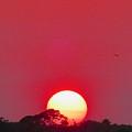 Sun Setting by Joe Wyman