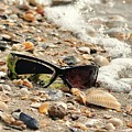 Sun Shades And Sea Shells by Al Powell Photography USA