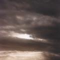 sun by Sidsel Genee