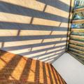 Sun Struck by Paul Wear