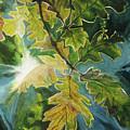 Sun Through Oak Leaves by Lynn Hansen