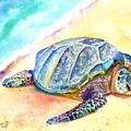 Sunbathing Turtle by Marionette Taboniar