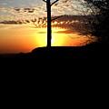 Sunburst Sunset by Douglas Barnett