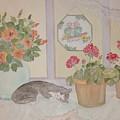 Suncatchers by Patti Lennox