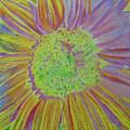 Sundelicious by Cris Fulton