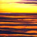 Sundown In The Marshlands by Addie Hocynec