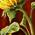 Sunflower - Sunny Side Up by Marjory Wilson
