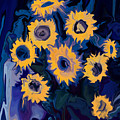 Sunflower 1 by Rabi Khan
