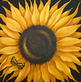 Sunflower And Butterfly by Ruth Bares