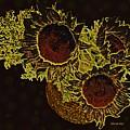 Sunflower Decor 10 by Sarah Loft