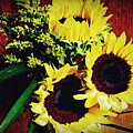 Sunflower Decor 3 by Sarah Loft