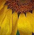 Sunflower by Donna Bentley