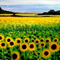 Sunflower Field by Elizabeth Robinette Tyndall