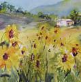 Sunflower Fields by Jacqueline  Newbold