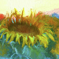 Sunflower Glow by OLena Art Brand