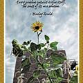 Sunflower Inspiration by Joan  Minchak