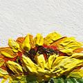 Sunflower by Irina Sztukowski