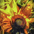 sunflower No. 1 by Susan Crowell