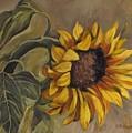 Sunflower Nod by Cheryl Pass