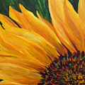 Sunflower Oil Painting by Mary Jo Zorad