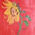 Sunflower by Rebekah Amick
