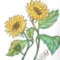 Sunflower by Sara Alhajeri