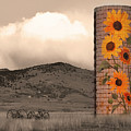 Sunflower Silo In Boulder County Colorado Sepia Color Print by James BO  Insogna