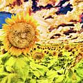 Sunflower Storm by Diana Raquel Sainz
