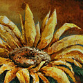 Sunflower Study by Michael Lang