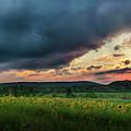 Sunflower Sunset 2018 by Bill Wakeley