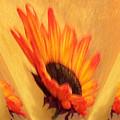 Sunflower To The Sky by Marsha Heiken