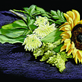 Sunflower by Vanda Luddy