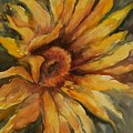 Sunflower by Virginia Potter