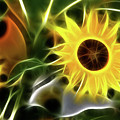 Sunflowers-4929-fractal by Gary Gingrich Galleries