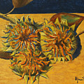 Sunflowers by Alfonso Palma