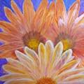 Sunflowers  by Gloria Sousa